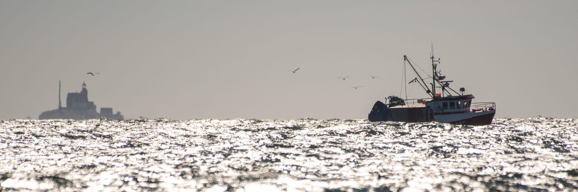 Torsbjørnskjær - til Utgådskilen med fangst